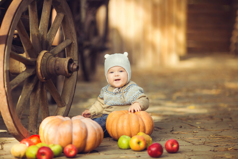 fall party ideas fall first birthday